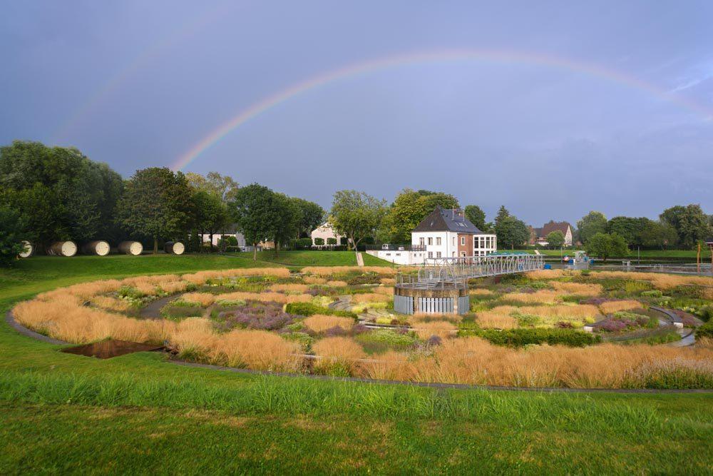 Der Bernepark in Bottrop. Foto: Gabi Lyko/EGLV